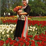 Ilustrata Olanda, costum popular