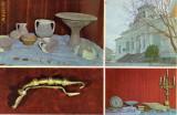 Ilustrata - Muzeul de arheologie si istorie Focsani, fibula dacica, vase dacice