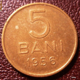 5 bani 1956 alama