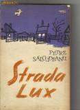 Petre salcudeanu - strada lux, 1962