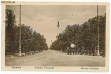 56 - BUCURESTI - Soseaua Kiseleff - old postcard - used - 1919