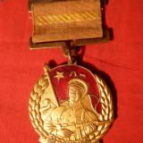 Decoratie CHINA 1950 - bronz cu email