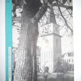 ANSAMBLUL BARATIEI DIN CAMPULUNG-MUSCEL(DIRECTIA MONUMENTELOR)BUCURESTI, 1968 - Istorie