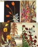 Set 5 ilustrate URSS : A doua viata a florilor