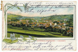 10032 - 5713 GROSSALMERODE, Litho, Germany Germania - old postcard - used - 1905, Circulata, Printata