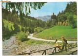 Carte postala- ALBA  - Valea Ariesului