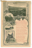 10027 - 5797 BINGEN, Litho, Germany, Germania - old postcard - used - 1906, Circulata, Printata
