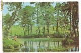 Carte postala-ORADEA-Rezervatia naturala