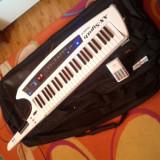 Roland ax synth - Orga