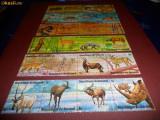 6 BLOCURI ANIMALE  BURUNDI