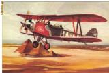Carte postala ilustrata AVIATIE -  Avionul Gerle 13 a lui Antal Banhidi(1933)