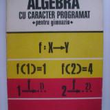 Dan Nica, Maria Nica - Algebra cu caracter programat, pentru gimnaziu (1978) - Carte Matematica