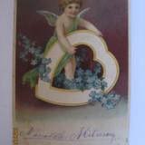 CARTE POSTALA CIRCULATA DIN ANUL 1906 - Carte postala tematica