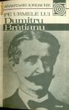 Pe urmele lui Dumitru Bratianu-Anastasie Iordache