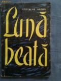 Luna beata-Costache Anton, 1962