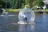 Vand minge de mers pe apa ( water ball zorb )