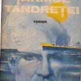 Tarmul tandretei - Ilie Tanasache - Roman