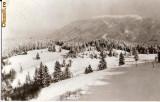 CP 209-24 Predeal. Vedere din Poiana Secuilor -circulata 1967 -starea care se vede
