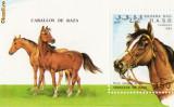 COLITA TIMBRE CAI SAHARA OCC  R.A.S.A. 1993