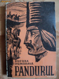 PANDURUL - BUCURA DUMBRAVA