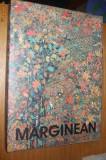 VIOREL MARGINEAN  Pctura/ Desen / Obiect  -- album
