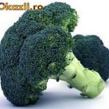 """Seminte Broccoli Verde """"Calabrese"""""""