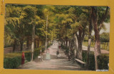 ALBA OCNA MURES APROX 1925
