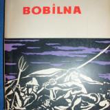 Bobilna-Stefan Pascu - Istorie