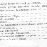 Doina-liana toma * al manoliu * v zanoschi -planta - o uzina vie - Carte Psihologie