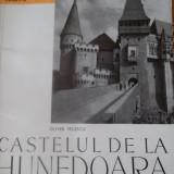 CASTELUL DE LA HUNEDOARA - Carte Geografie