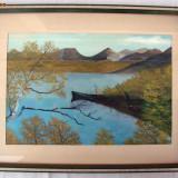Pictura pe carton peisaj cu lac, semnat A.Vikman - Pictor strain