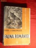 I.Simionescu - Fauna Romaniei - Prima Editie 1938