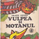 VULPEA SI MOTANUL, FRATII GRIMM - Carte de povesti
