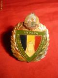 Insigna Graniceri -pt Merite in Paza Frontierei - RSR ,h=4cm