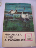 MINUNATA LUME A PASARILOR - I BORDEIANU