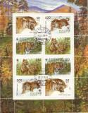 bloc timbre tigri rusia 1993