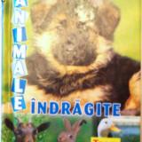 ANIMALE INDRAGITE - Carte educativa