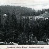 Păltiniş ~1930, Necirculata, Fotografie