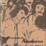 (C1275) ADUNAREA NATIONALA DE LA BLAJ DE V. CHERESTESIU, EDITURA POLITICA, BUCURESTI, 1966; 3-5 ( 15 - 17 ) MAI 1848,