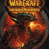 Vand cont de Wow-Cataclysm, Druid level 85 Stormscale - Joc PC Blizzard, Role playing, 16+, MMO
