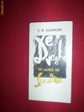 De veghe in lanul de secara-Salinger