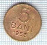 288 Moneda 5 BANI 1953 -starea care se vede -ceva mai buna decat scanarea