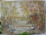 Cumpara ieftin Padure - 4 , pictura veche in Ulei pe carton de dimensiunile 90 x 67 cm