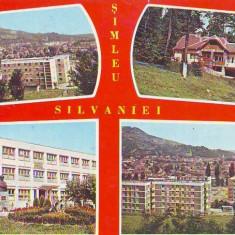 S 1194 SIMLEU SILVANIEI Vedere generala CIRCULATA