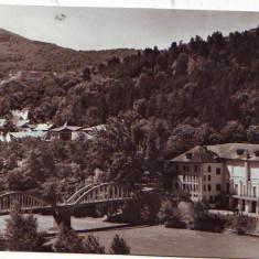 S-10147 CALIMANESTI Pod peste Olt CIRCULAT - Carte Postala Oltenia dupa 1918