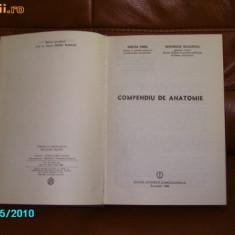 COMPENDIU ANATOMIE