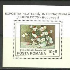 Romania 1979 - PICTURA FLORI LUCHIAN, colita MNH, Z986 - Timbre Romania, Arta, Nestampilat