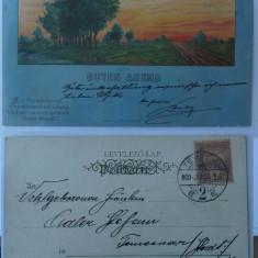 Litografie , circulata la 1900 la Timisoara , stare excelenta, Printata
