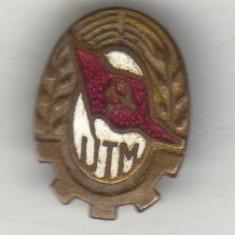 bnk ins insigna UTM
