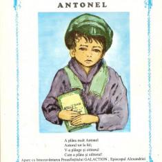 Vasile Marcu-Antonel - Biblia pentru copii